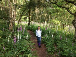 light-heart meditation school forest bathing (1)